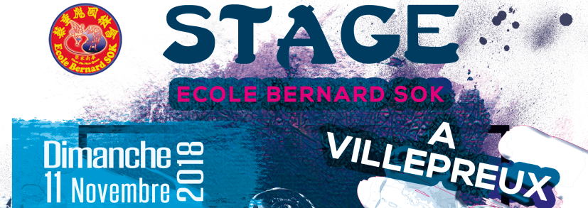 Stage SANDA àVillepreux