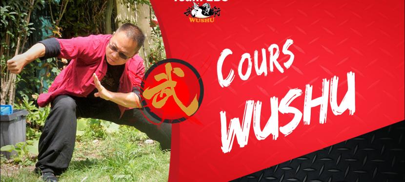 Cours Wushu
